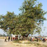 राना युवा क्लबकी गाँव सफाई अभियान सुरू